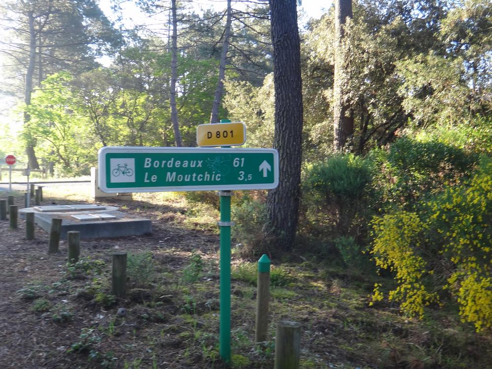 Lacanau-Océan à Bordeaux en roller