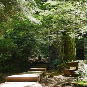 Vancouver ils aiment les chemins et escaliers en boishellip