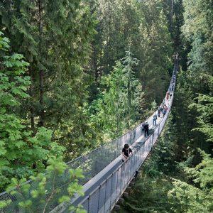 Cap daffronter ton vertige sur un vritable pont suspendu enhellip