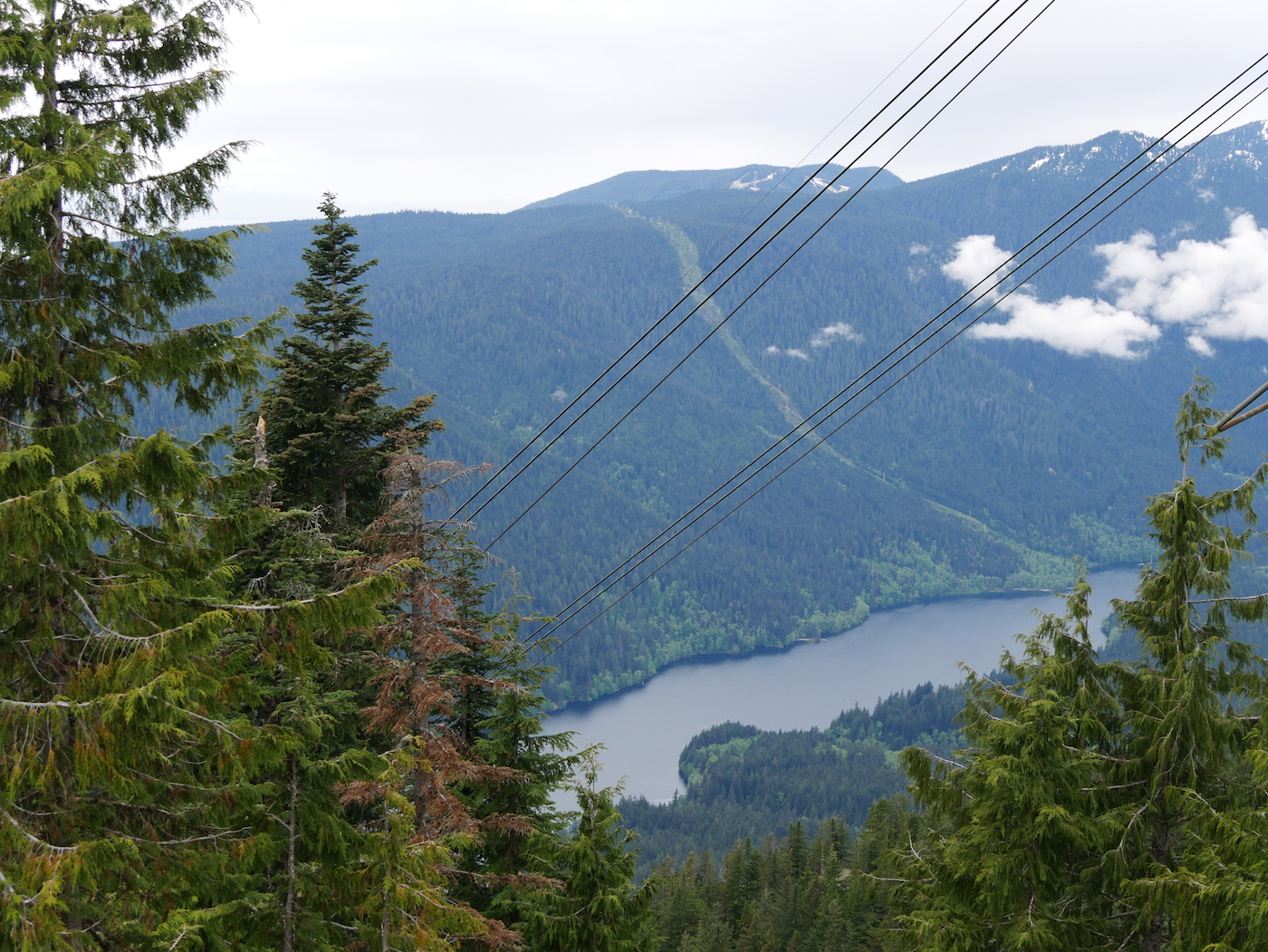 Vue Grouse Mountain