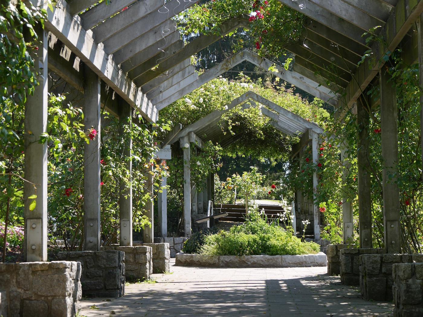 floraison parc Vancouver