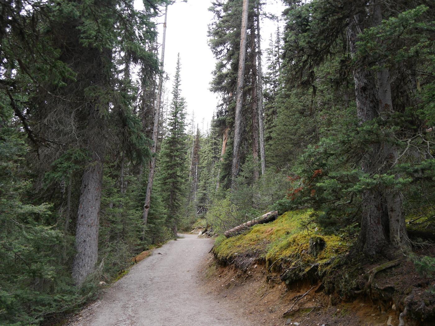 Sentier du Lac Agnes