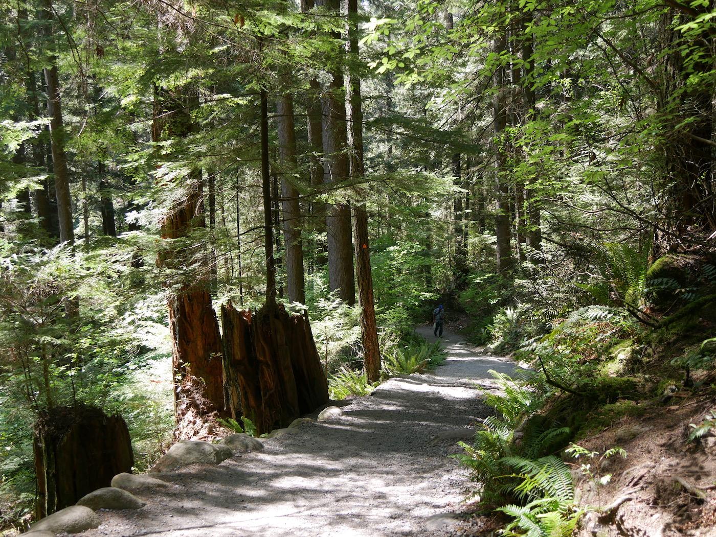 Visiter Lynn Canyon Park