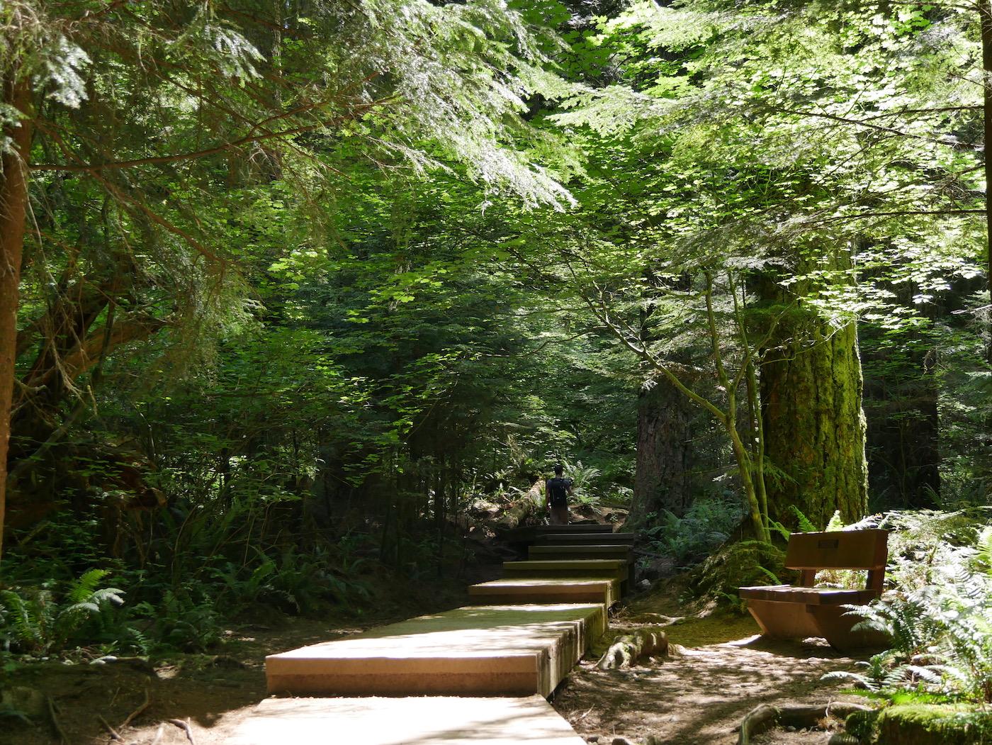 Escalier Lynn Canyon Park