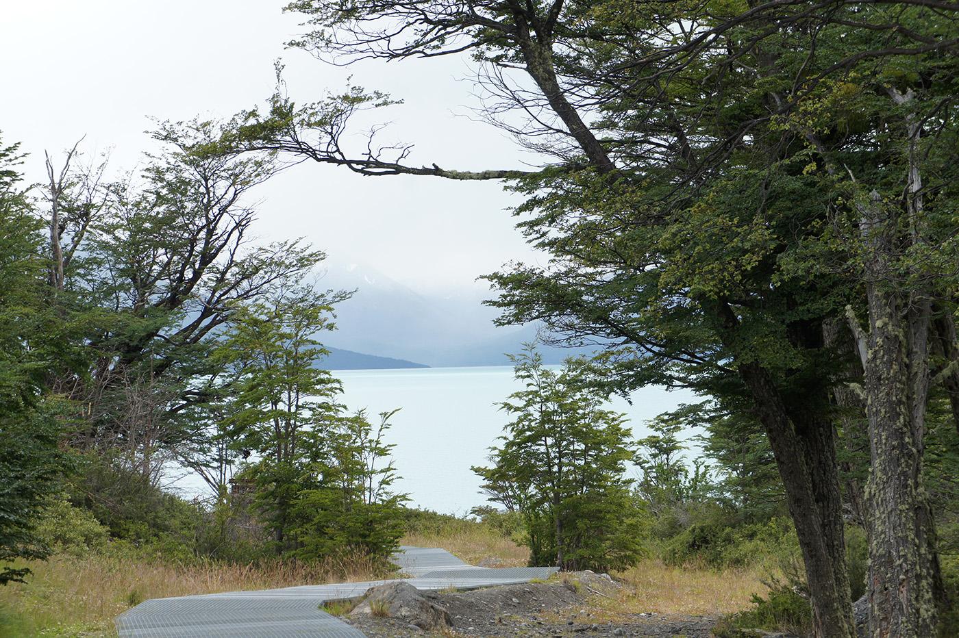 Visiter le Perito Moreno à pied