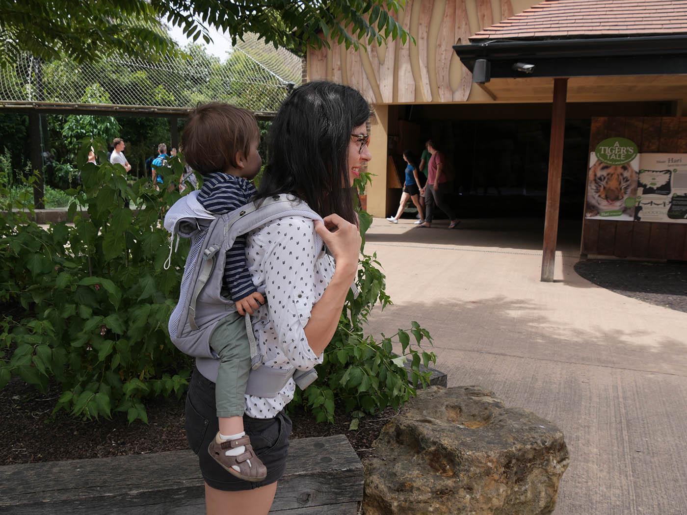 Visite du London Zoo