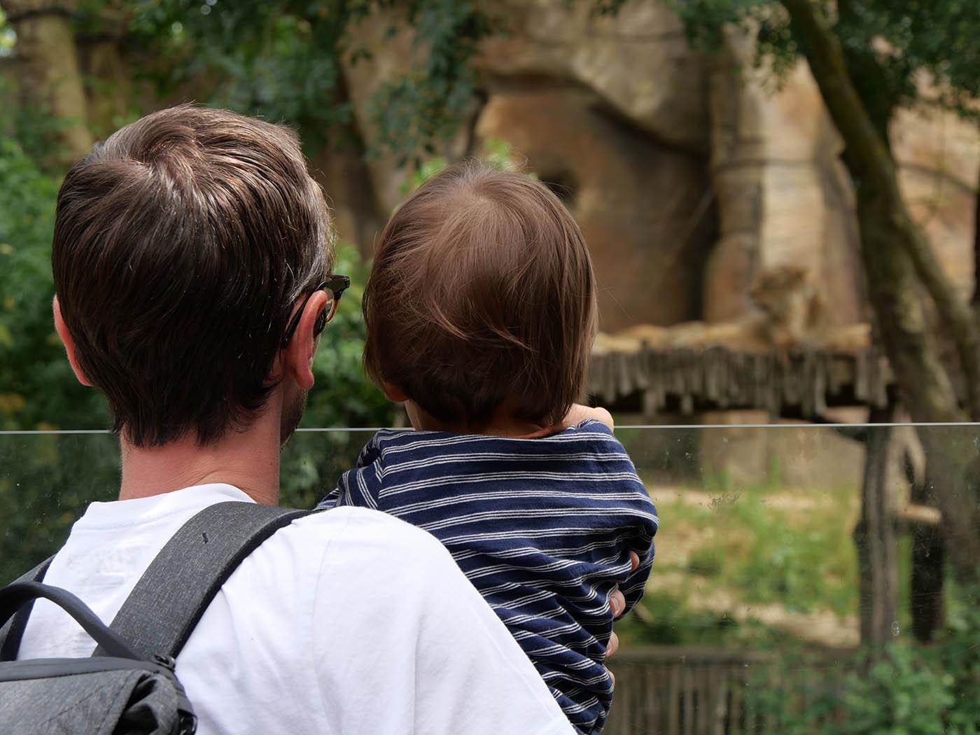 Zoo de Londres avec un bébé