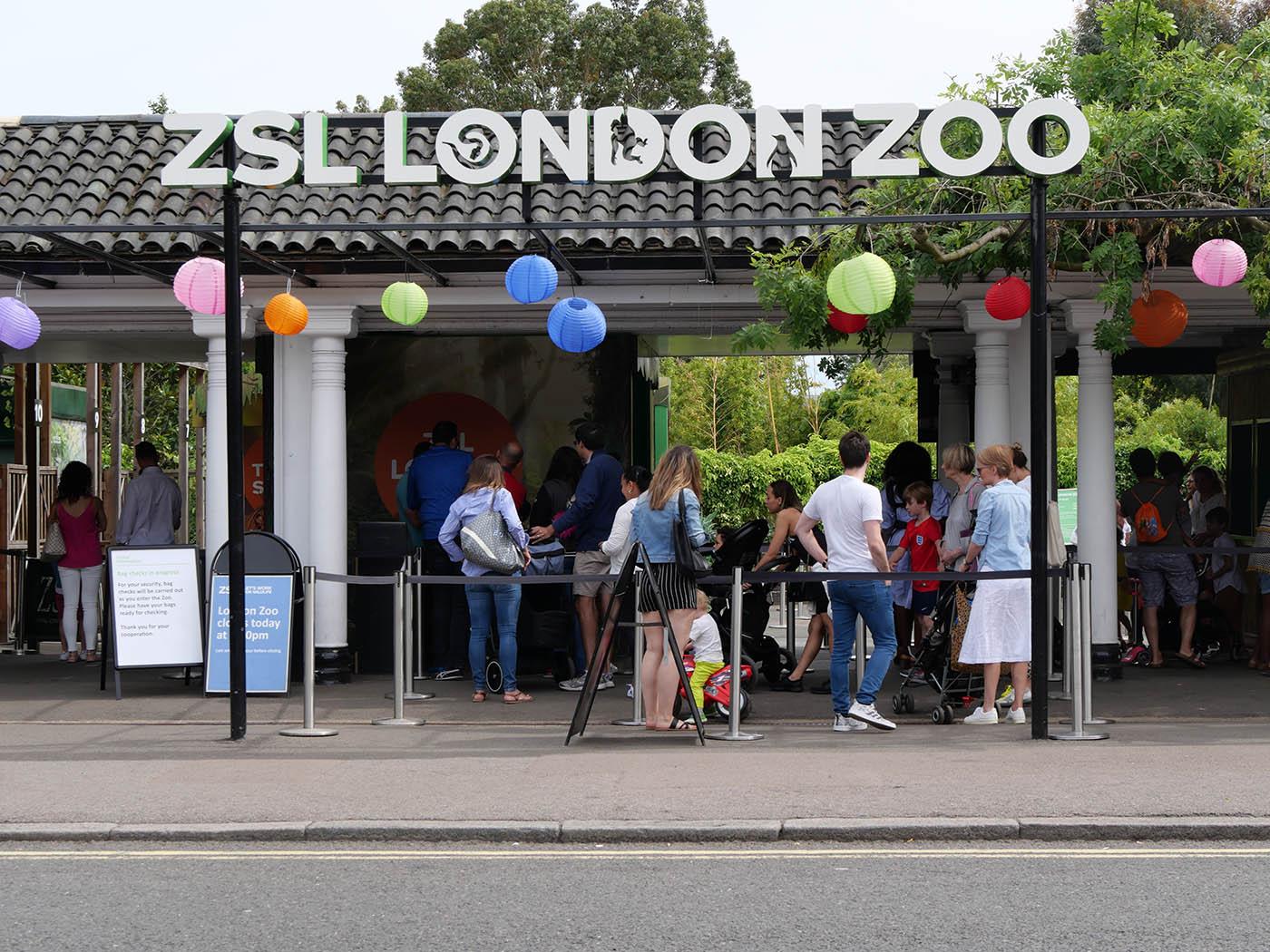 Visite du Zoo de Londres