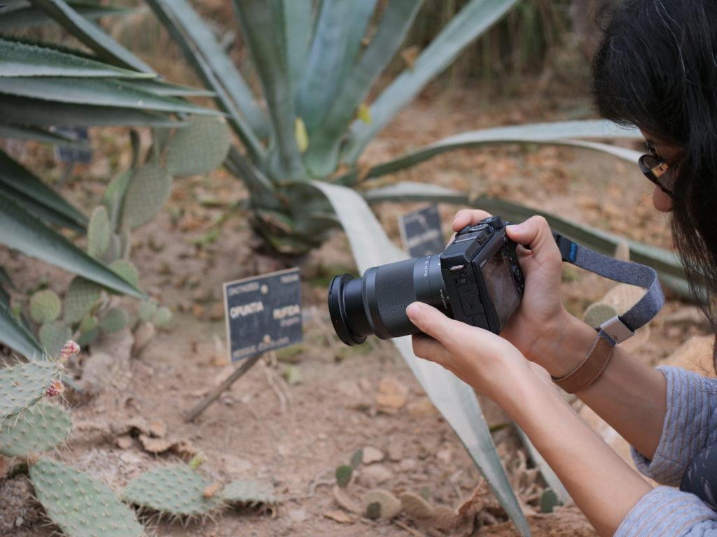 Canon EOS M6 II viseur